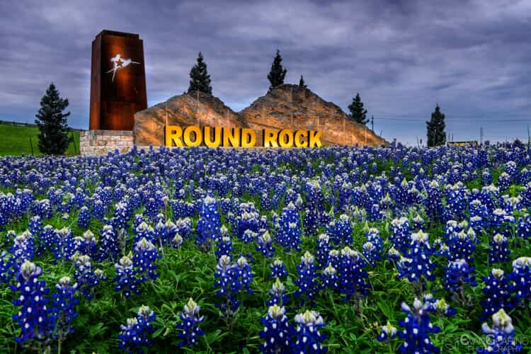 City of Round Rock sign behind a field of bluebonnets